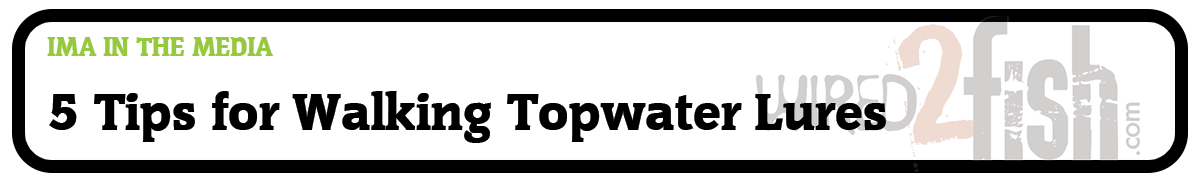 5 Tips for Walking Topwater Lures in Open Water (Wired2Fish.com)